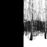 sacha-federovsky_landskap4